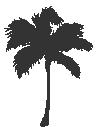 Caribbean-Icon